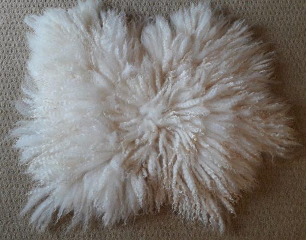 Felted Sheep Fleece Rug - Masham Fleece