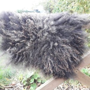Small Wool Fleece Rug - Hebridean Fleece