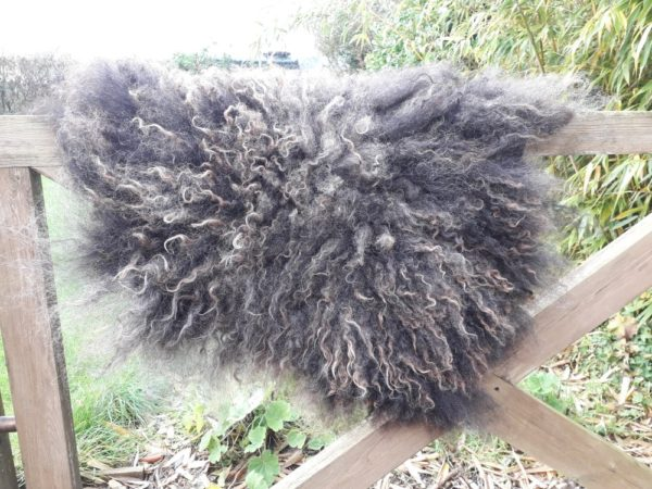 Small Wool Fleece Rug - Hebridean Fleece